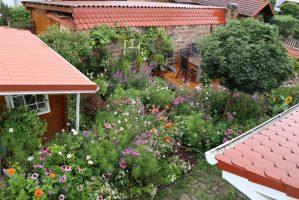 Was kostet es, einen Garten anzulegen – muhvie.de ...