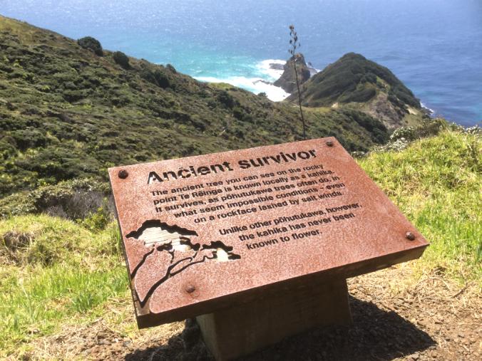 Cape Reinga - letrero