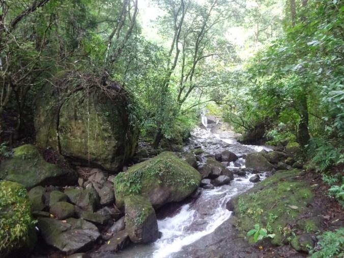 Panamá. La caminata hacia la cima en La India Dormida.