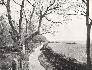 ১৯০৯ সালে তোলা ডারউইনের থিংকিং পাথ-এর ছবি