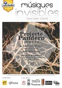 Projecte Pandero - Músiques Invisibles