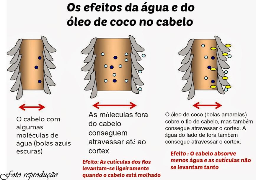 Resultado de imagem para efeitos do oleo de coco nos cabelos