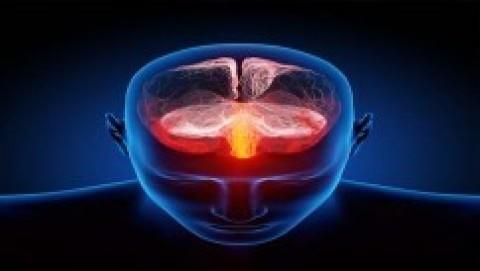 Resultado de imagem para imagens sobre a crença e o cerebro