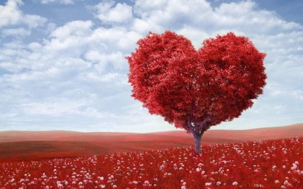Árvore em formato de coração