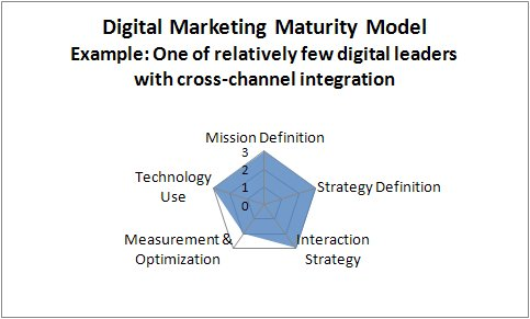 Digital-marketing maturity model example - cross-channel leaders