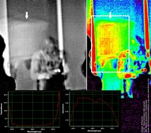 _DSC0663.jpg_Green_wavelet_dett1 Marche 2011