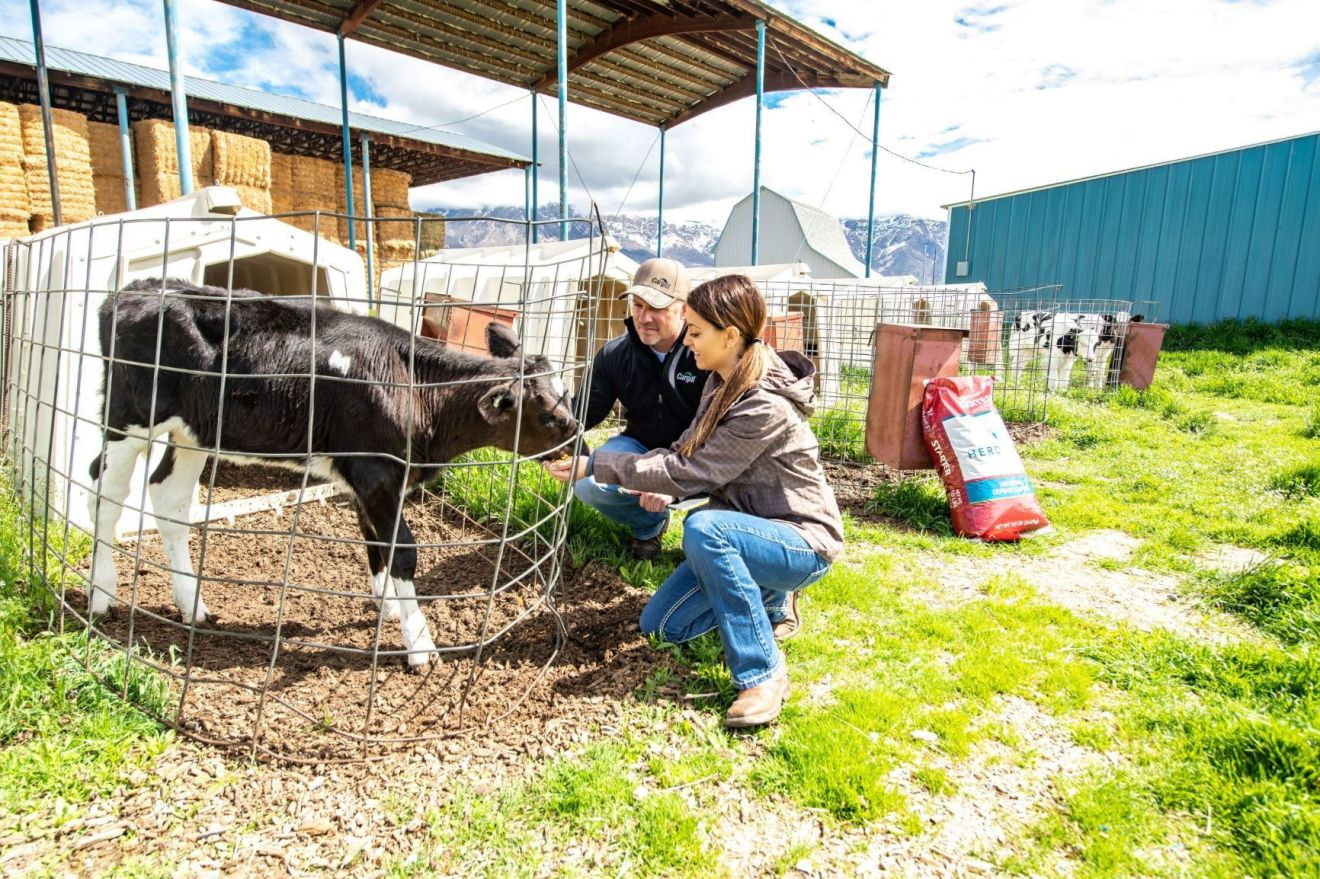 UtahDairyPappys 1622676035200 HR - Farmers Are Key to Global Supply Chain Resilience: Cargill Chairman