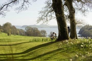 Trelissick Garden, Cornwall©National Trust Images John Millar