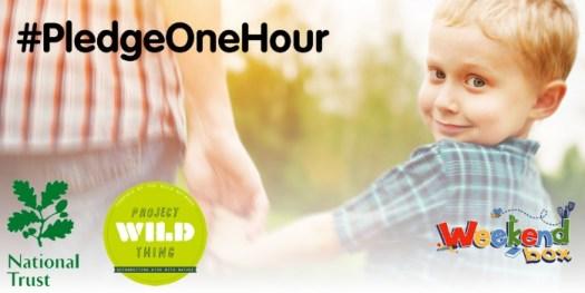 pledge one hour