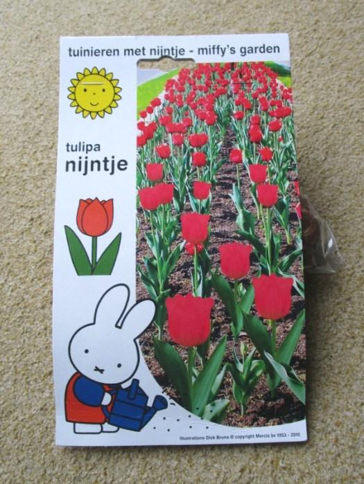 miffy tulips, nijntje tulipa