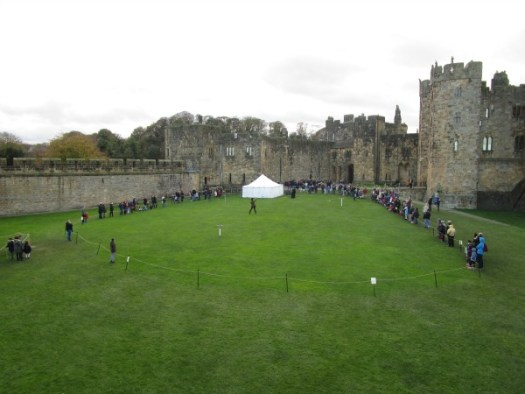 Alnwick Castle Falconry display