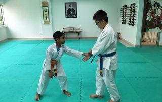 Mumei Shudan Aikido Kids