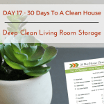 Day 17 – 30 Day House Cleaning Challenge: Deep Clean Living Room Storage Units