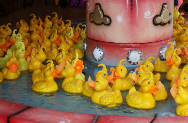 duck race game at Paulton Park