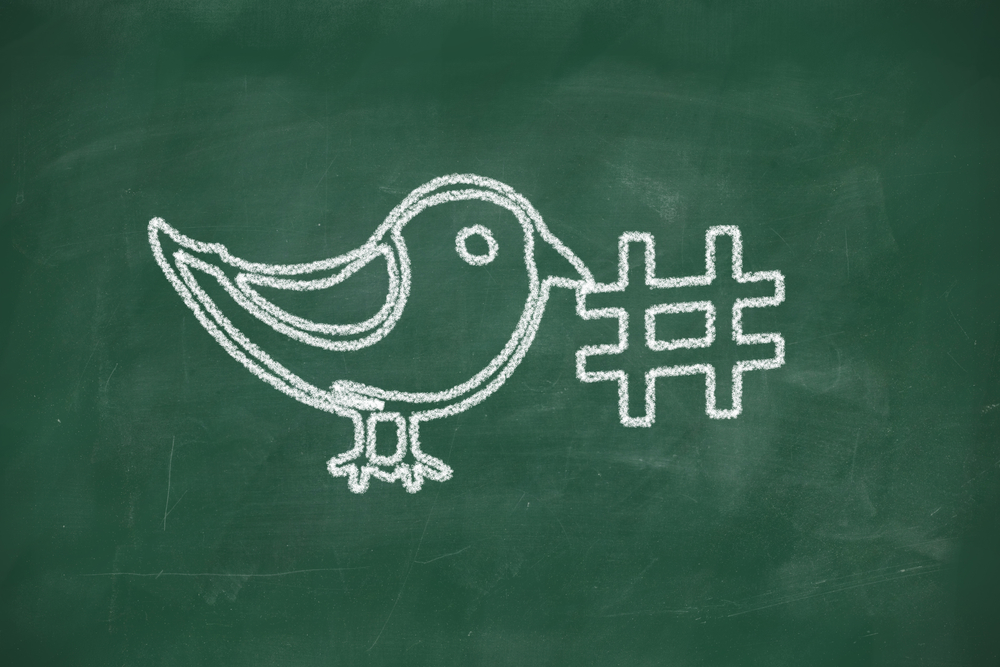 A black board with a bird drawn in chalk holding a hashtag sign