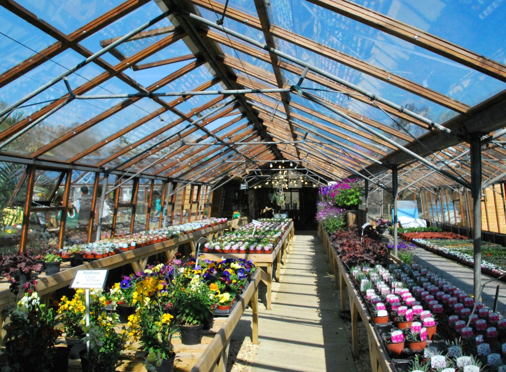 Setley Ridge New Greenhouse
