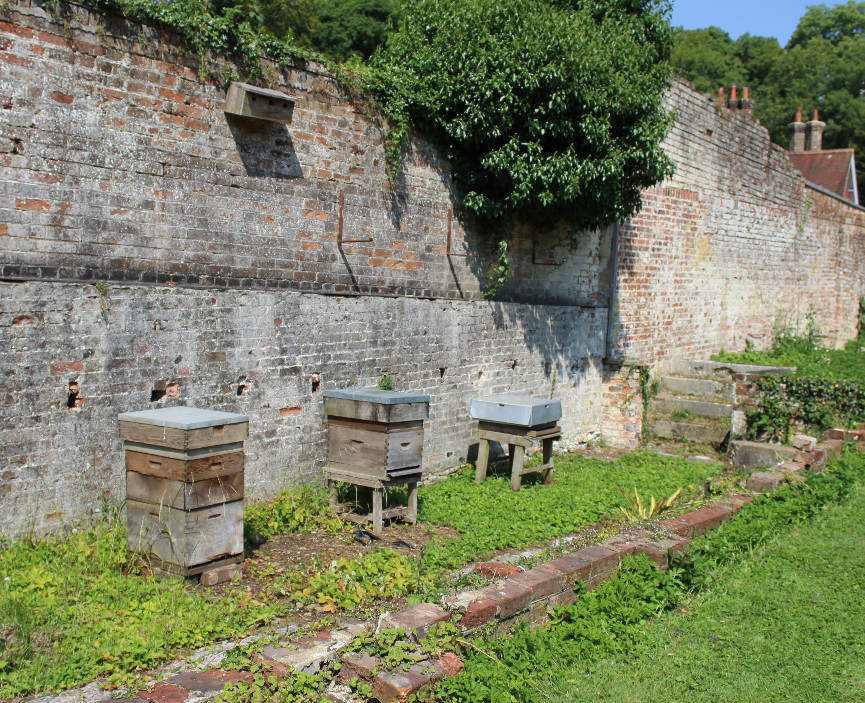 Beehives at Chawton House Library
