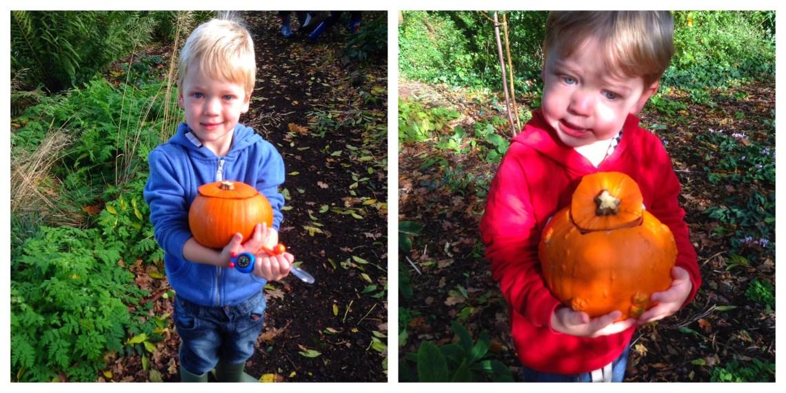 pumpkinhunt Collage