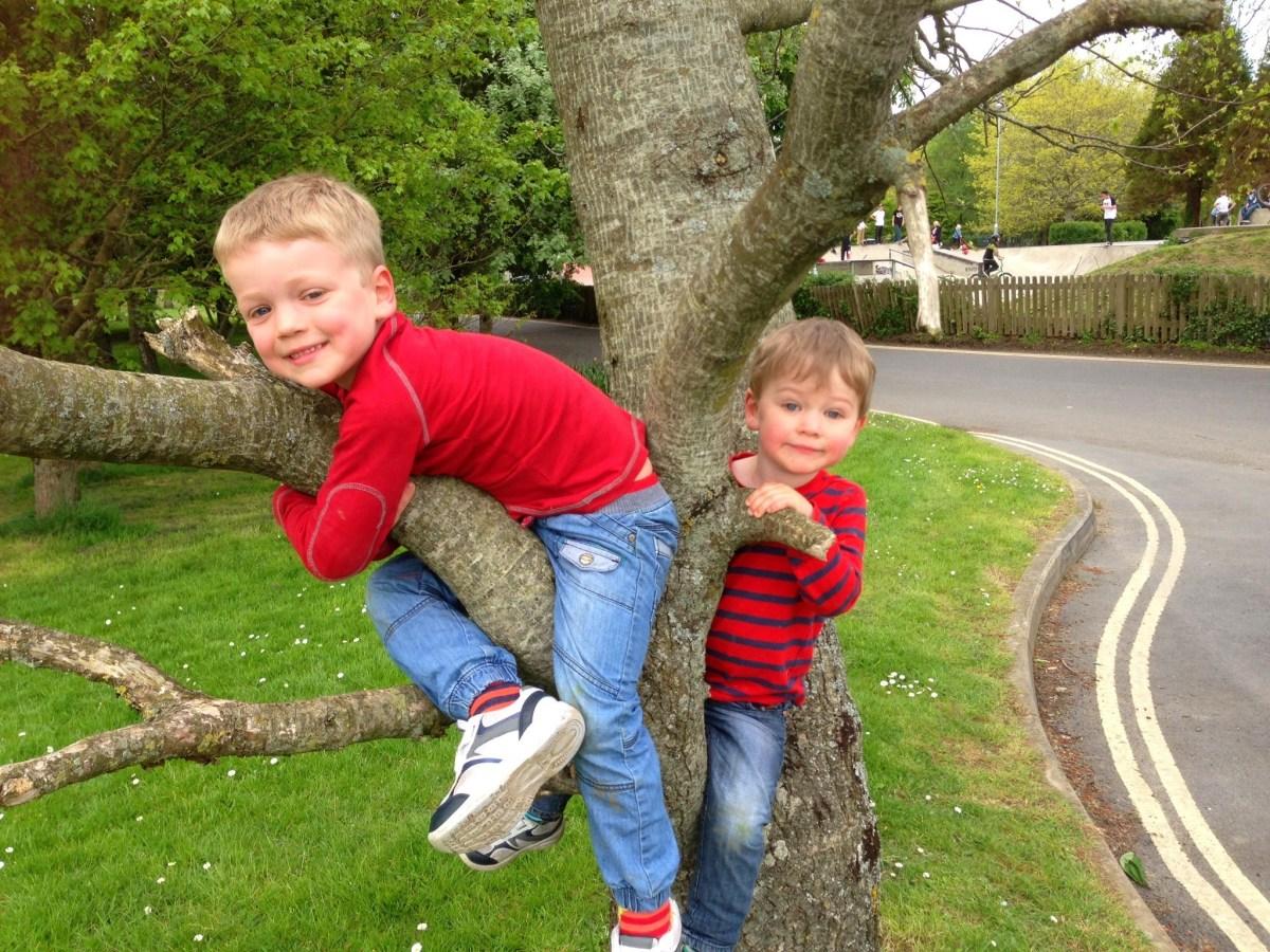 treeclimbboys