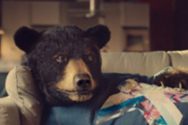 Virgin Media introduces Ed the Sofa Bear