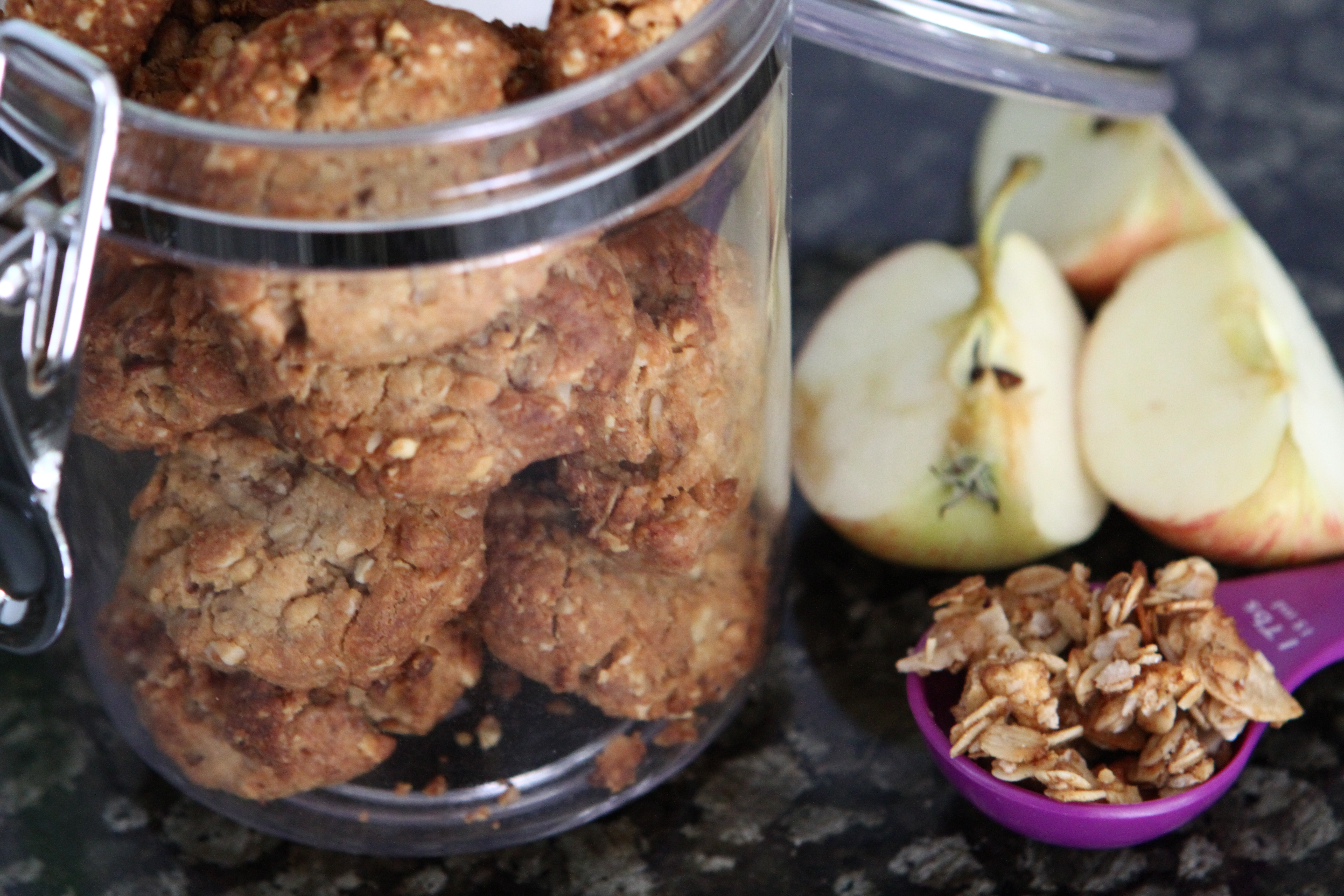 Sugar Free Peanut Butter & Apple Granola Cookies
