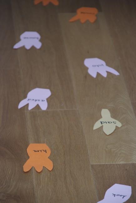 Reading and Dinosaur footprints