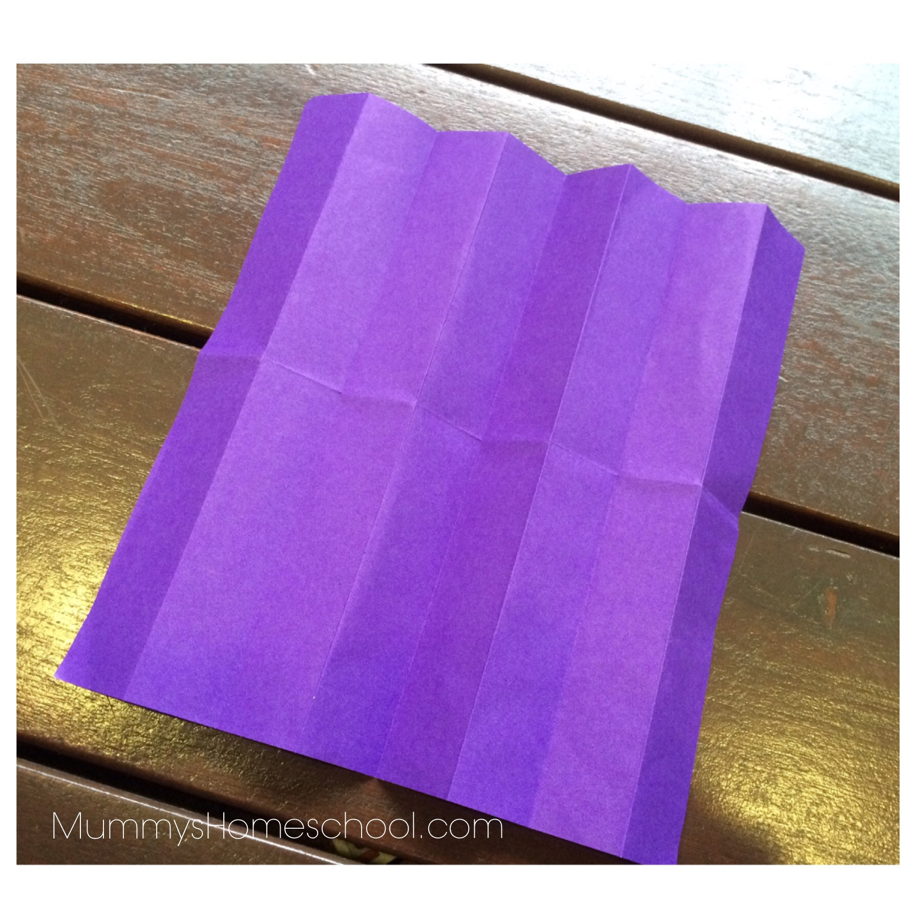 Math Fractions With Origami Mummy S Homeschool
