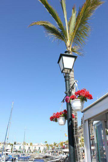 gran-canaria-puerto-mogan-street5