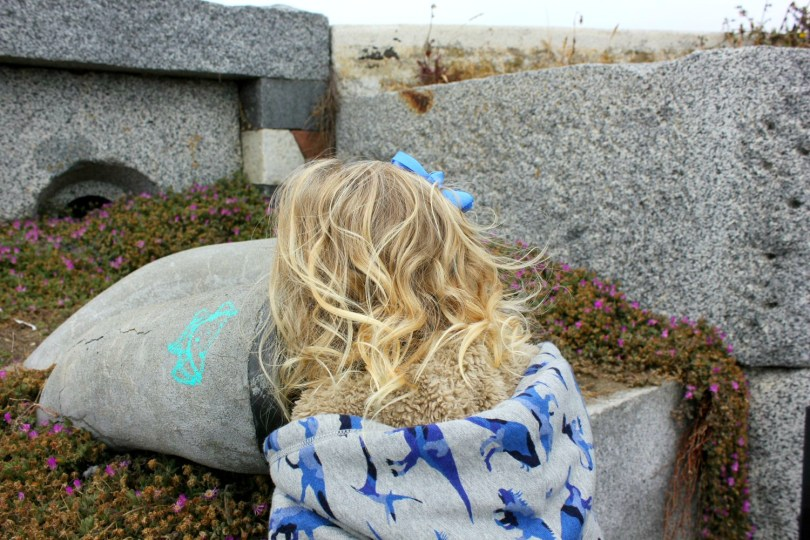 63 Things To Do In San Francisco With Kids Mummytravels