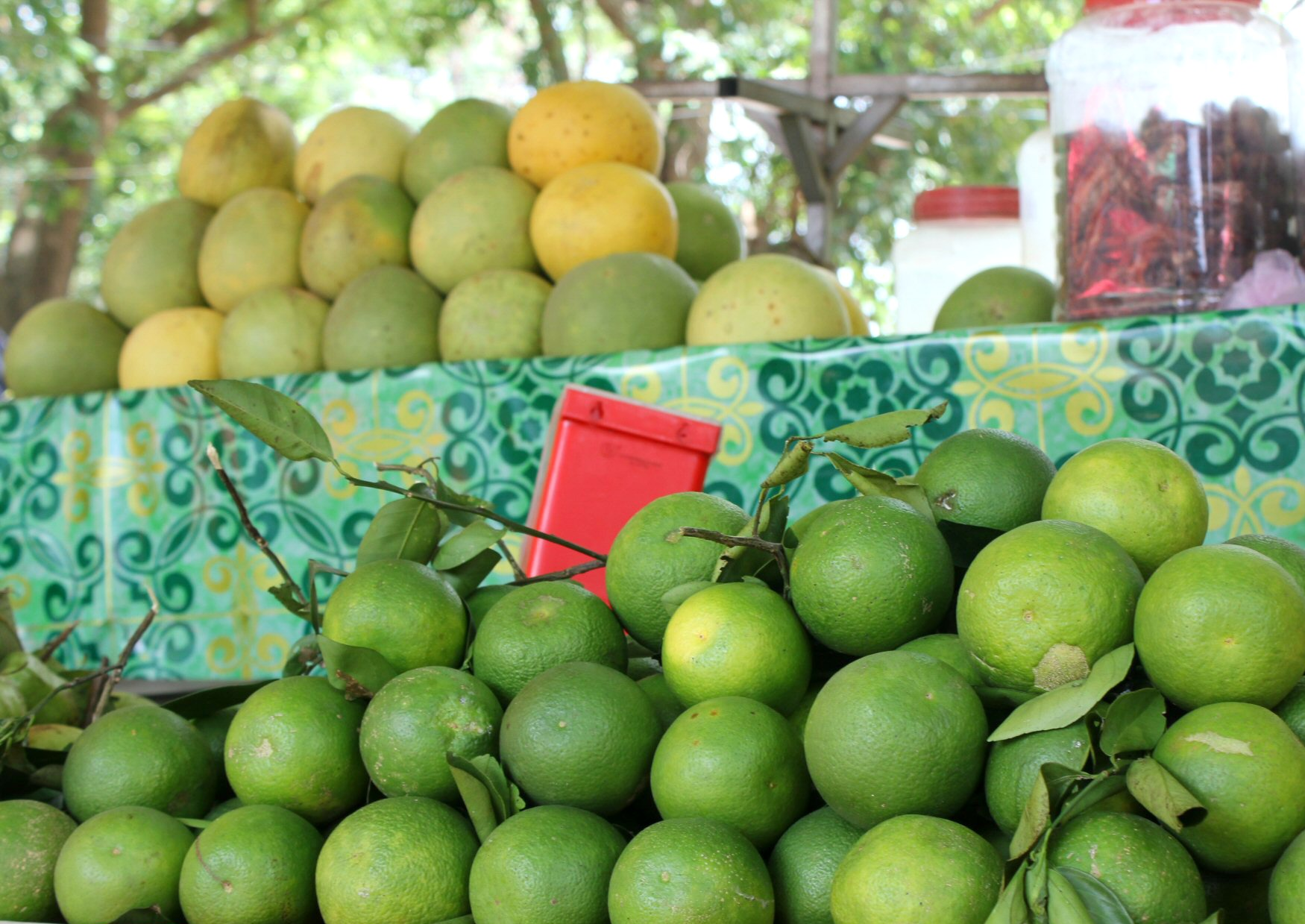 Piles of green oranges in Battambang - 12 reasons to visit Cambodia with kids