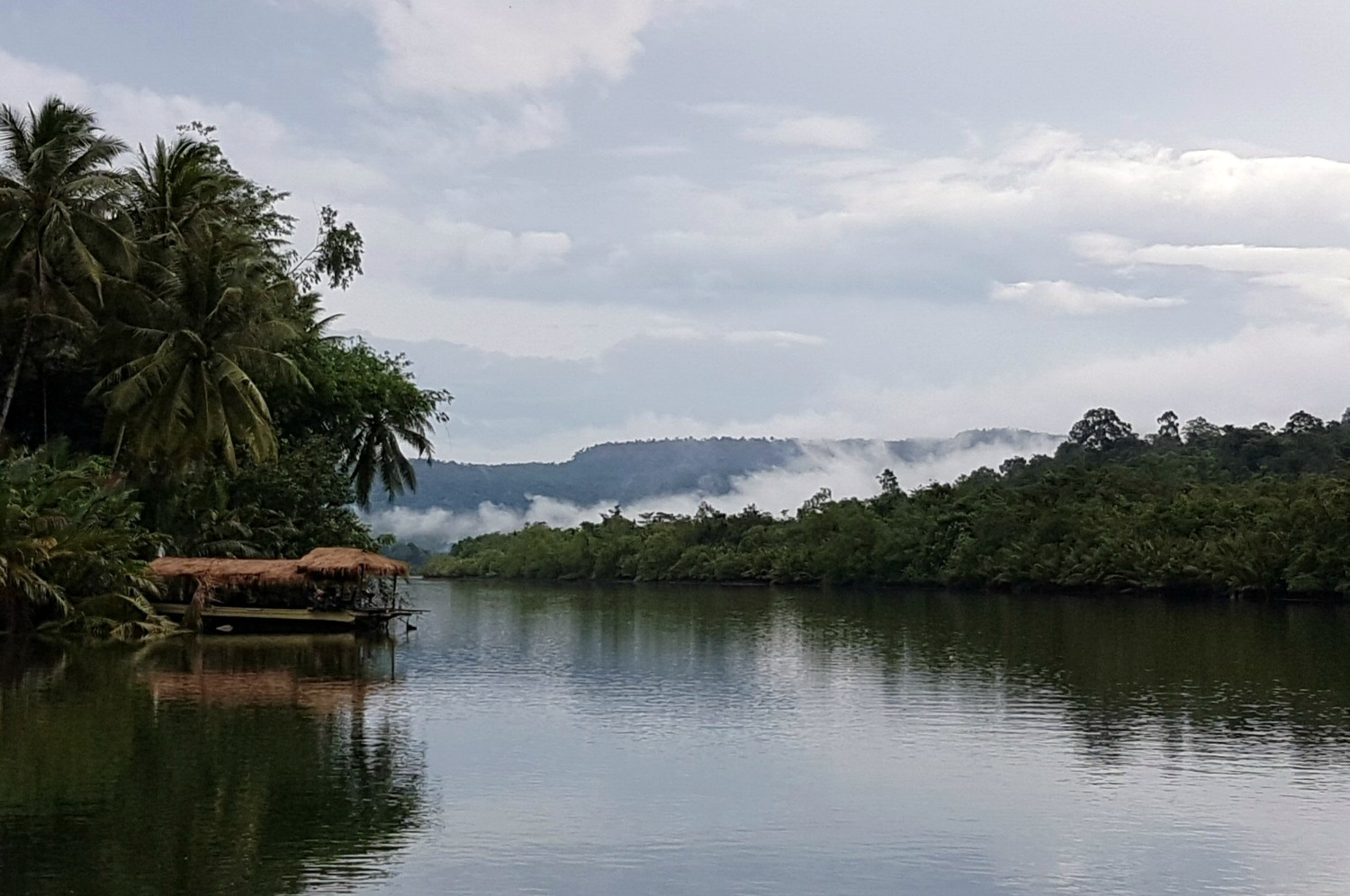 Cloud above the Tatai river in the Cardamom mountains - 12 reasons to visit Cambodia with kids