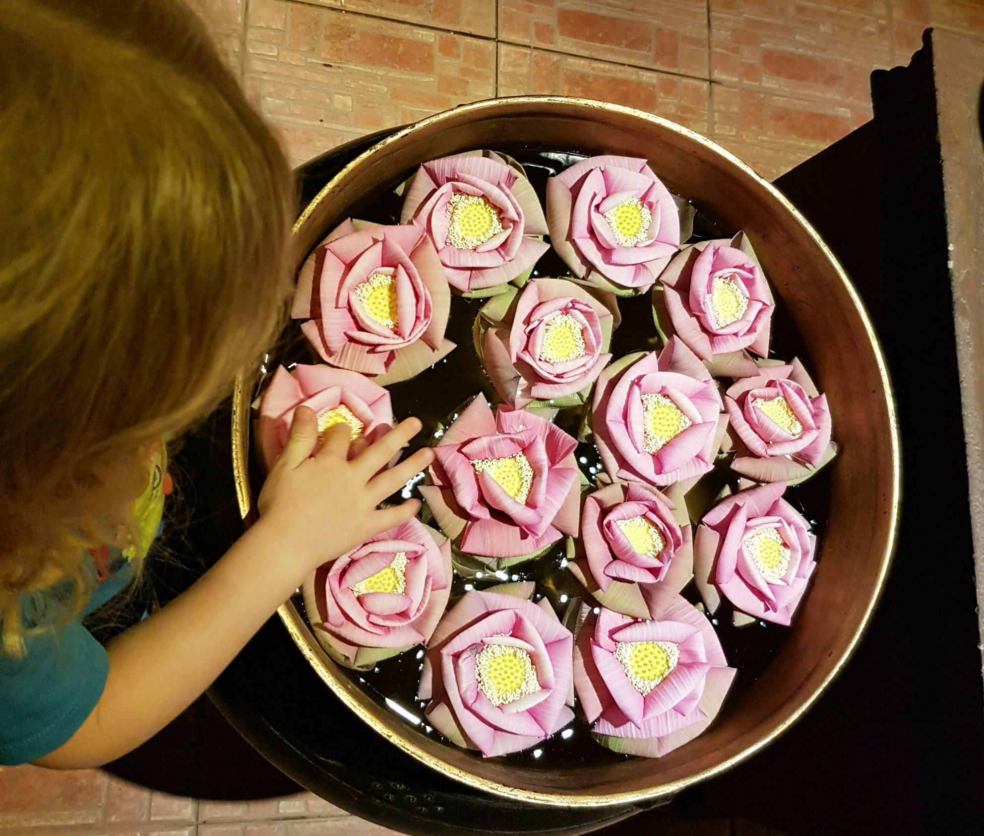 My daughter reaches to touch pink flowers floating in a bowl - 12 reasons to visit Cambodia with kids