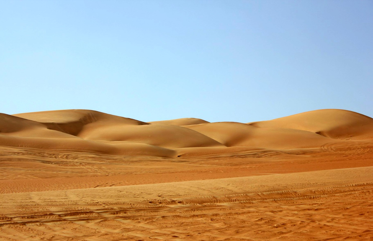 Burned orange sand dunes with tyre tracks in the sand in front at Wahiba Sands in Oman - my nine reasons to visit Oman with kids