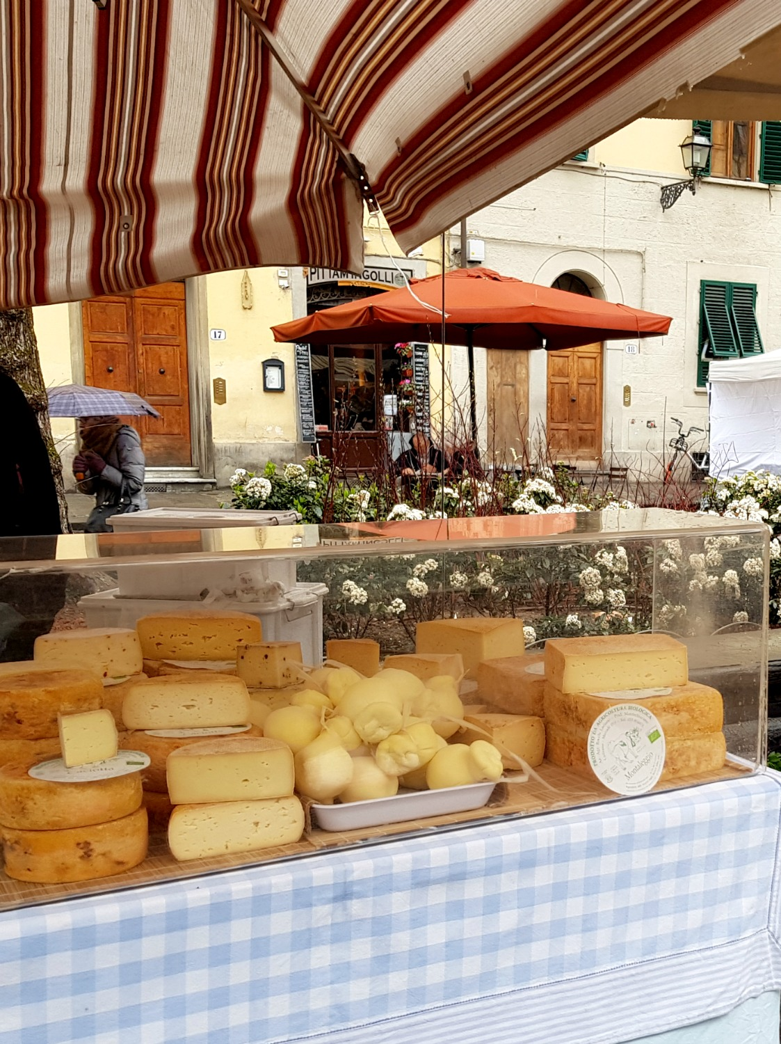 Cheese for sale at a farmer's market in Florence, Italy - my Uffizi tour with kids and gelato making day in Florence
