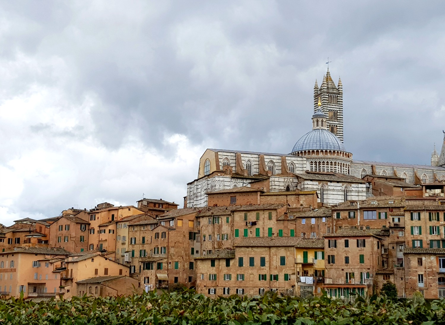 View towards the Duomo and skyline of Siena - exploring Siena with kids, our tour discovering art, history and animals
