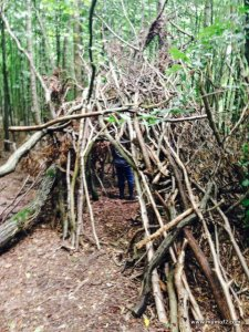 den building, mumof2, nature at it's best