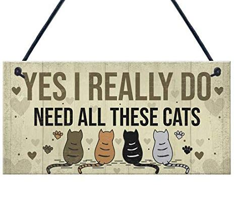 """Wooden Pendant""""YES I Really DO Gift""""Hanging Plaque Wooden Poster Signage Plate Hang for Wall Decor Birthday Gift"""