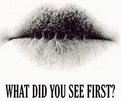 What Do You See First?