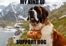 my kind of support dog