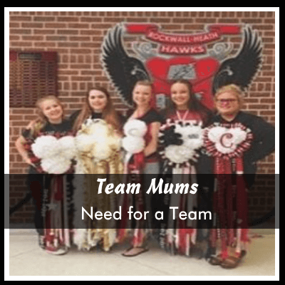 team homecoming mums and garters