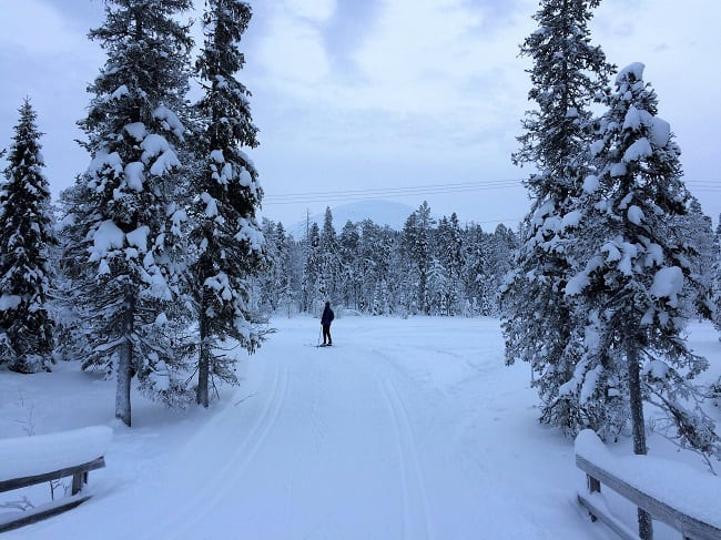Cross-country ski trail Lapland