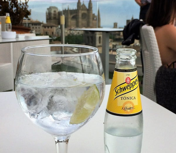 gin and tonic with palma cathedral