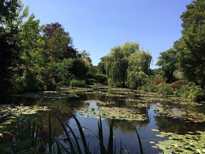 Pond in water garden, Monet's garden