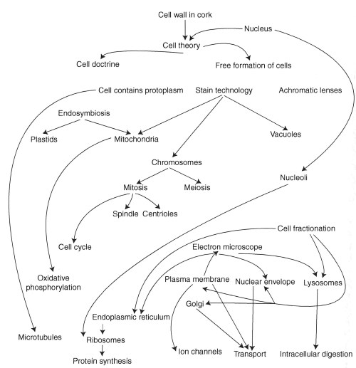 small resolution of history of cell organelles