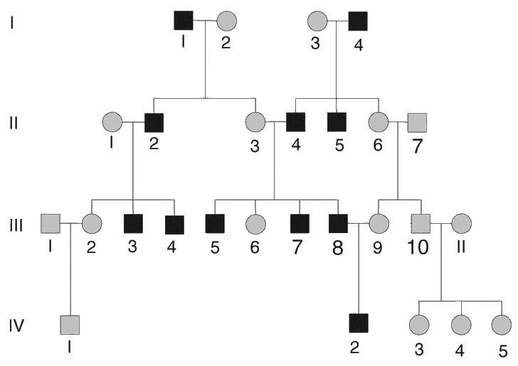 Y-linked inheritance