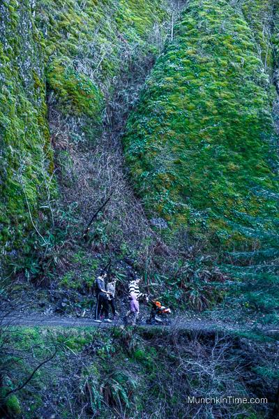 Hiking in Oregon - Wahkeena Falls Trail by Multnomah Falls 2015