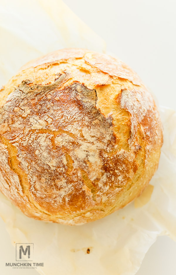 Best No Knead Bread Recipe
