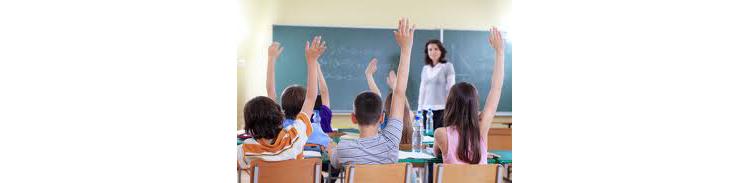 ¿Están los profesores de los colegios a favor o en contra de las clases particulares?