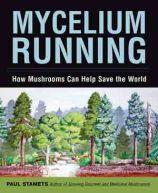 mycelium-running1