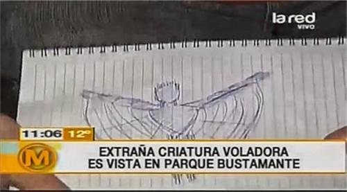 Criatura voladora Santiago de Chile Avistada una extraña criatura voladora en Santiago de Chile